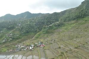 terrazas arroz batad filipinas